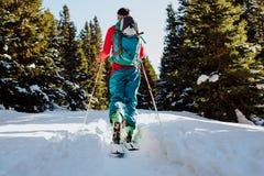 Ski, der in Winter in Österreich bereist Lizenzfreie Stockbilder