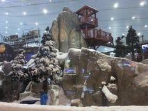 Ski Dubai al centro commerciale degli emirati nel Dubai, UAE Fotografia Stock Libera da Diritti