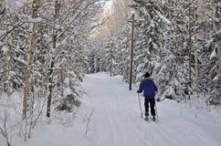 Ski fahren in der Natur Stockfotografie