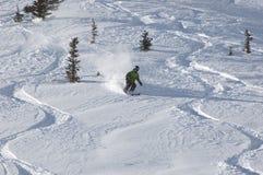 Ski fahren im Puder Stockbild