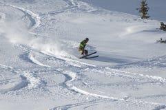 Ski fahren im Puder Stockfotografie