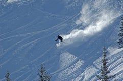 Ski fahren unten im Puder Lizenzfreie Stockfotos