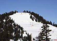 Ski fahren am Waldhuhn-Berg Stockbilder