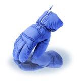 Ski glove | Isolated Stock Photos