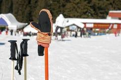 Ski gloves and sticks Stock Image