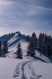 Ski het reizen in mooi zonnig de winterlandschap, Oberstdorf, Allgau, Duitsland Royalty-vrije Stock Fotografie