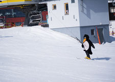 Ski instructor of ski school in a penguin suit. Ski resort in Alps, Austria, Zams Royalty Free Stock Photography