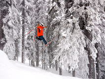 Ski jump. Skier in orange jacket does daffy trick off of ski jump in front of snow covered trees stock image