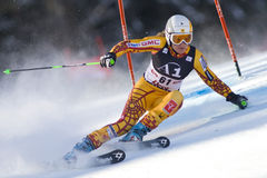 SKI: Lienz Giant Slalom Royalty Free Stock Images