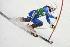 SKI: Lienz Slalom Royalty Free Stock Photography