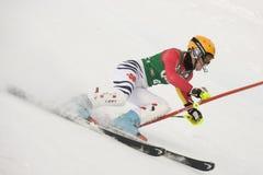 SKI: Lienz Slalom Royalty Free Stock Images
