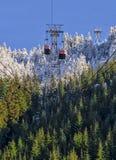 Ski lift descending. Two ski lift gondolas descend a tree lined mountain Stock Photos