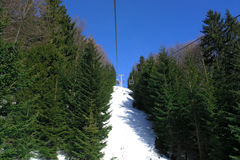 Ski-lift in fir wood. With blue sky Royalty Free Stock Photo