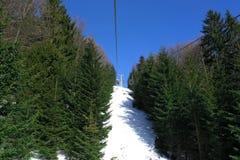 Ski-lift in fir wood Royalty Free Stock Photo