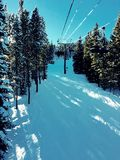 Ski Lift. Running through snow covered trees in the Colorado Rockies Stock Images