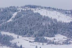 Ski Lifts Fotos de Stock