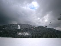 ski park Obrazy Royalty Free