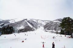 ski park Obraz Royalty Free