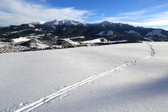 Ski path across meadow. In winter mountains Stock Images