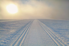 Ski path on snow at sunrise Stock Photography