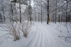 Ski piste Royalty Free Stock Photography