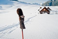 Ski Pole with mitten Stock Photography