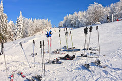 Ski poles. A lot of ski poles and winter equipment on ski area in Slovakia Stock Photography