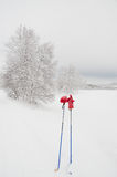 Ski poles and red gloves Royalty Free Stock Photos