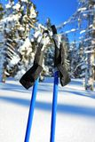 Ski poles with winter Royalty Free Stock Photography