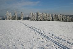 Ski print in the landscape Royalty Free Stock Photography