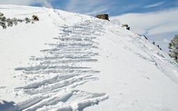 Ski prints on the slopes in the morning. Ski prints on the slopes in ske resort at lake Tahoe in California, USA Stock Photography