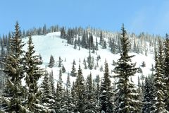 ski prochowa hill Fotografia Stock