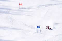 Ski Racer Royalty Free Stock Photo
