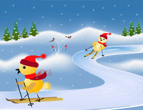 Ski races Royalty Free Stock Photo