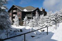 Ski Resort ha coperto in neve fotografia stock libera da diritti