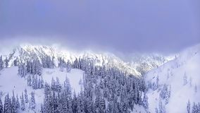 Ski resort after heavy snowfall. Trees covered with snow. Mount Hood. Portland. Oregon. United States stock image