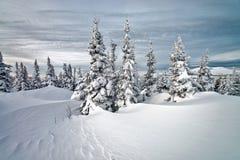 Ski resort Sheregesh, Kemerovo region, Russia. Royalty Free Stock Images