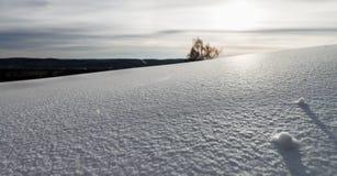 Ski resort Sun valley. Stock Photos