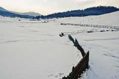 Ski resort in winter, Gulmarg, Jammu And Kashmir, India Royalty Free Stock Photo