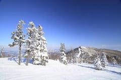 ski run Stock Photo