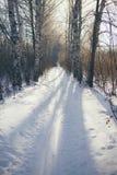 Ski run Stock Photography