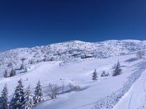 Ski run skiers at winter holiday sunny day. Ski run and skiers at winter holiday in a sunny day Royalty Free Stock Photo