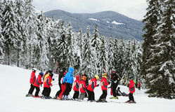 Ski school. A group of kids and ski teachers at a ski resort, pine trees in snow Stock Images