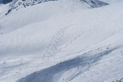 Ski sleep-Rila-MUSALA Royalty-vrije Stock Fotografie