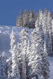 Ski slope. Cold mountain with bumps stock photos