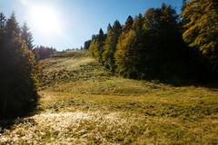 Ski slope in the black forest in the autumn season Royalty Free Stock Photography