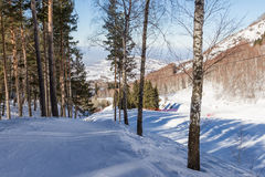 Ski slope in forested mountains Stock Photos