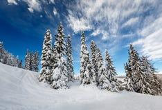 Ski Slope nära Madonna di Campiglio Ski Resort, italienska fjällängar Fotografering för Bildbyråer