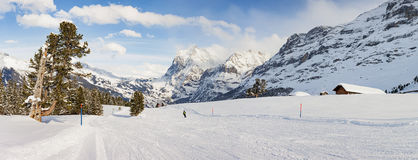 Ski Slope panoramico in Grindelwald Immagine Stock