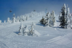 Ski slope in the snow forest Royalty Free Stock Photos